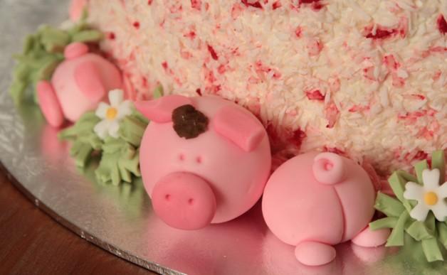 Tort ze świnkami